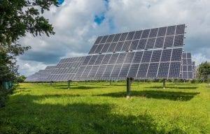 Onderzoek certificering zonneparken met meerwaarde voor ecologie